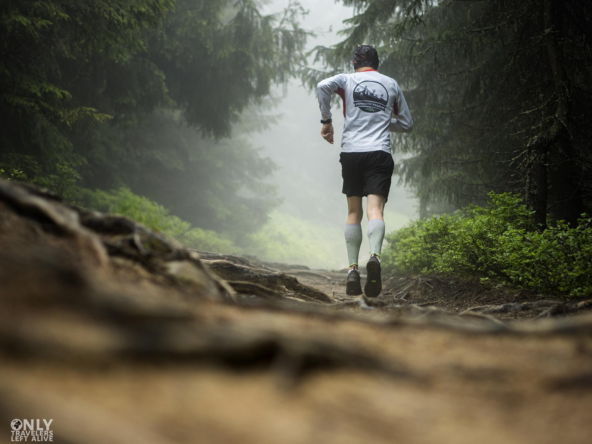nienerwowi biegacze na szlaku only travelers left alive
