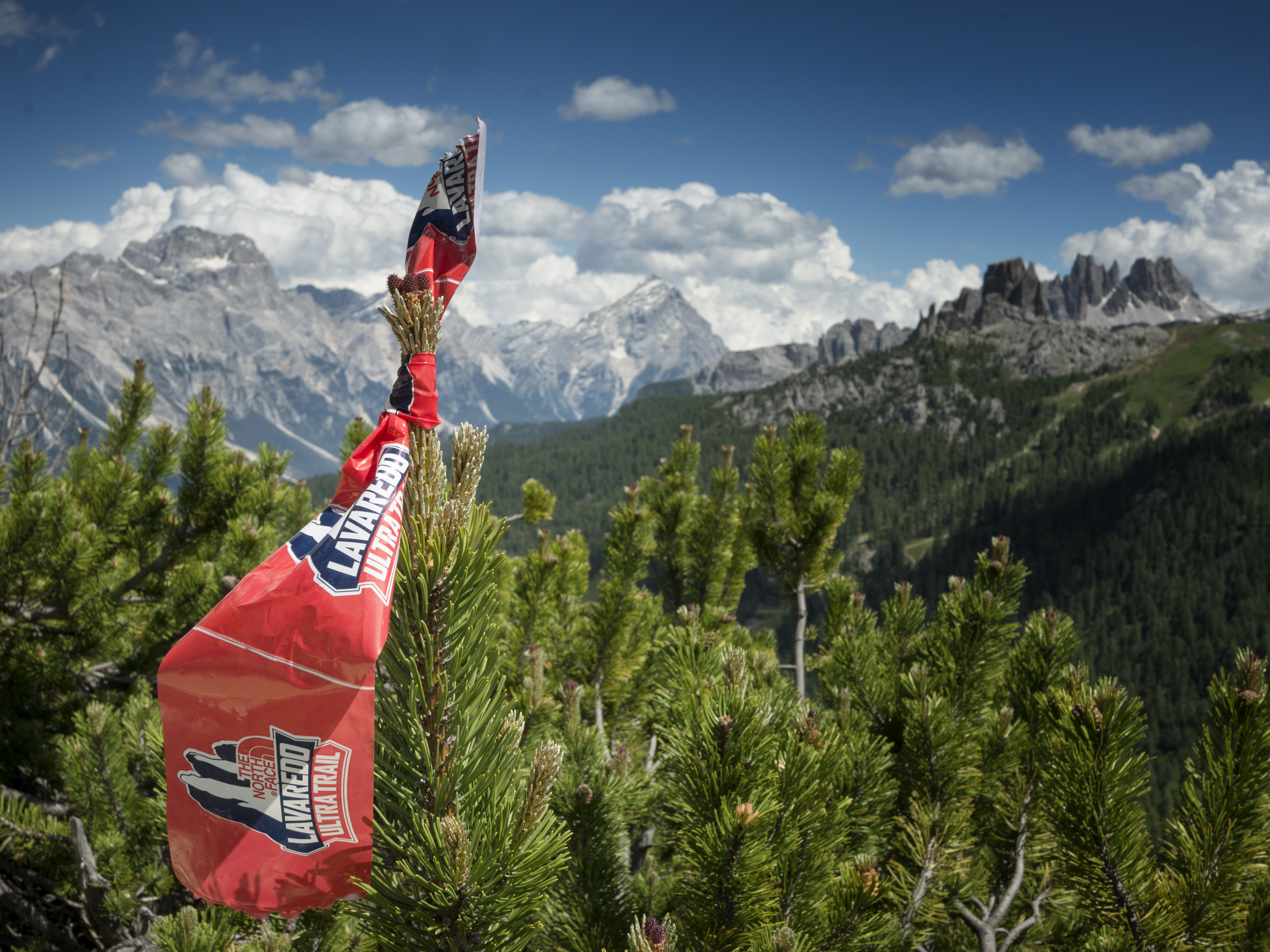 Cortina Trail Path